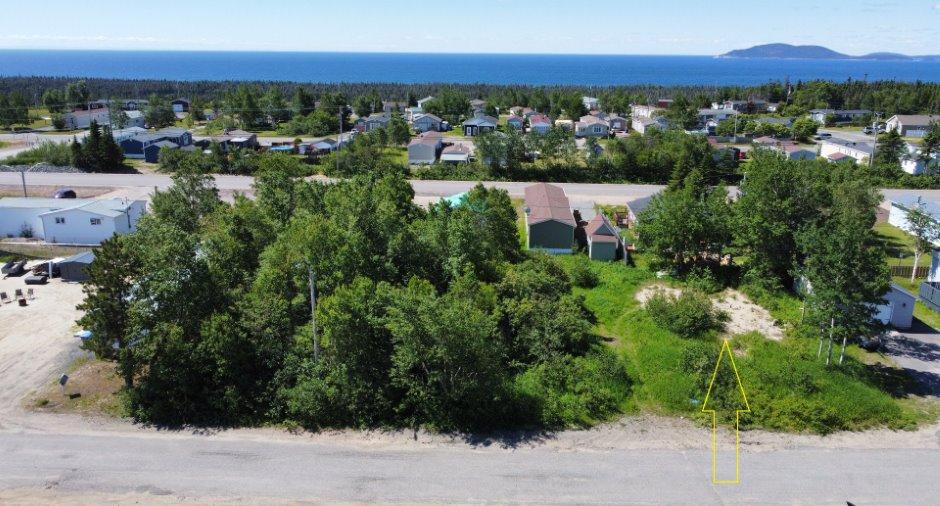 Terre/Terrain